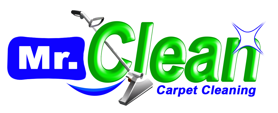 charlotte carpet cleaners carpet cleaning in charlotte nc